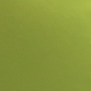 interiér-svetlo zelená