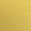 interiér-žltá