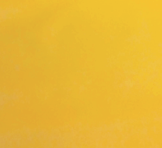 exteriér-žltá